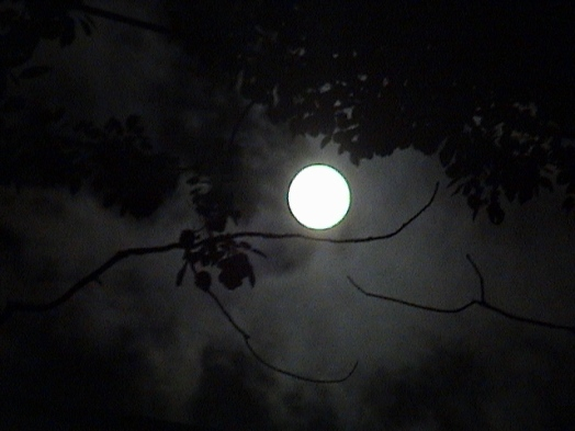 moon_by_alice77222
