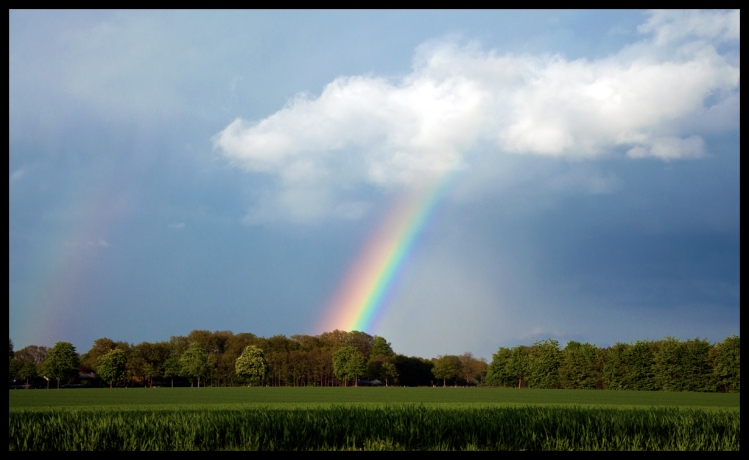 rainbow_by_skia-d6556lu
