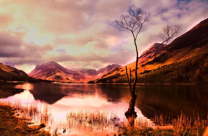 light_on_the_landscape_by_capturing_the_light-d9woj5u.jpg