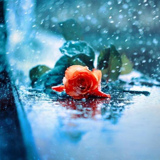 rain____by_kokoszkaa-d51dswy.jpg
