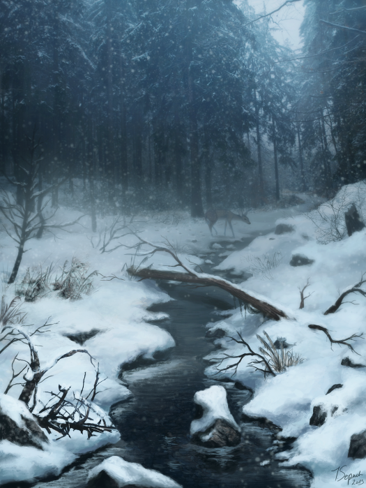 winter_by_riikozor-d6xpbz2.png