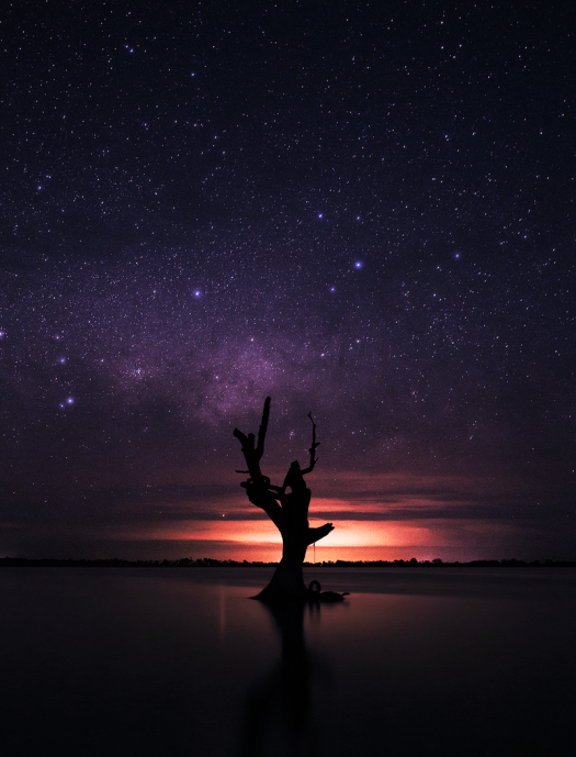 last_one_standing_by_aquilapse-d8d7oj5.png